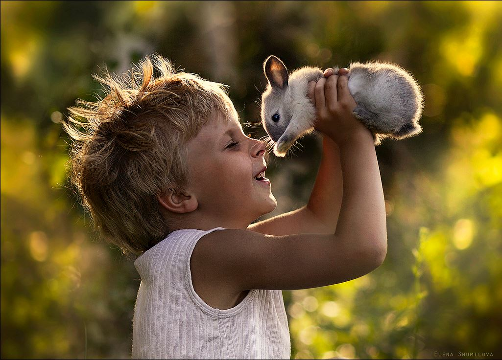 Дети и домашние животные: все счастливы! (фото)