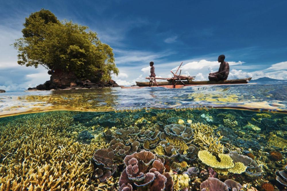 https://emosurf.com/i/00063K00iVDj0g8/mestnyj-rybak-i-ego-syn-grebut-nad-korallovym-sadom-v-zalive-kimbe-papua-novaya-gvineya-fotograf-devid-dubile_large.jpg